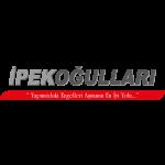logo kopyası 2